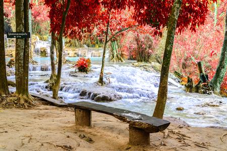 tat: Wooden bench at rainforest waterfall, Tat Kuang Si Waterfall at Luang Prabang, Loas.