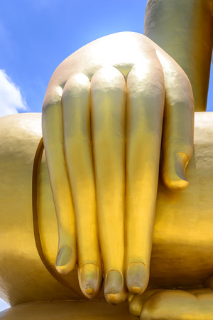 buddha hand: Closeup of Buddha hand. Stock Photo