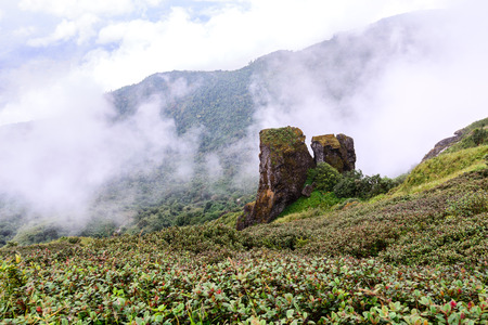 pan tropical: Two big stones placed on mountain at at Doi Inthanon National Park in Chiang Mai, Thailand.