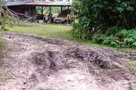 muddy: Muddy road in rain forest.