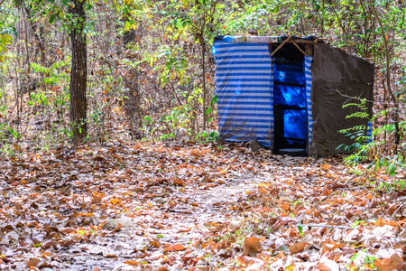 temporarily: Temporarily toilet in forest. Stock Photo