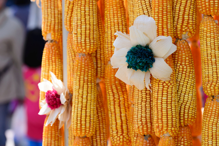 handcraft: Beautiful flower made from corncob, Thai handcraft product.