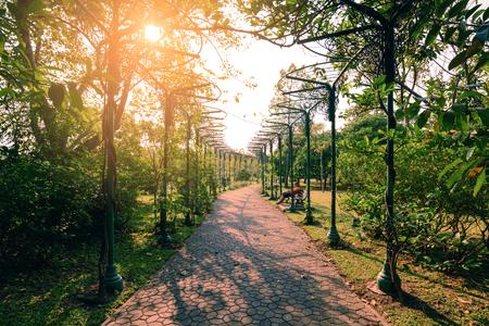 sylvan: Pathway middle of sylvan garden in urban city.