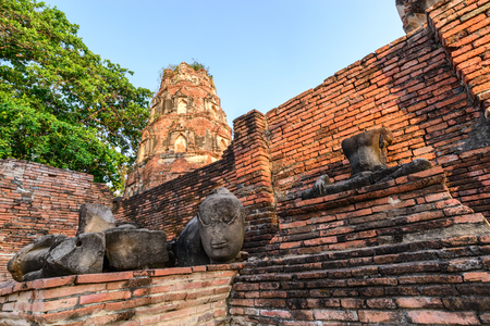 ayothaya: Wat Mahathat, Buddhist temple in in Ayutthaya historic park, Thailand.