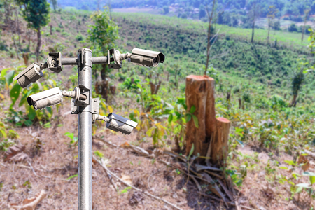 hinder: Security camera CCTV for monitoring and protection forest. Stock Photo