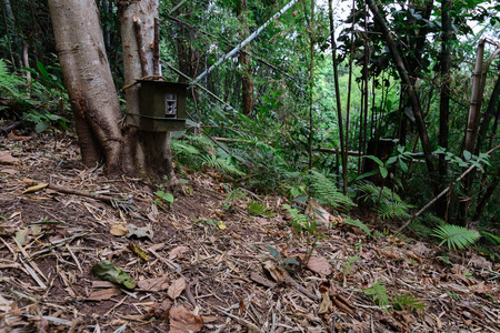 ploy: Camera trap use for auto take photo or video of wildlife, hard to find.  Stock Photo