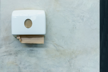 Tissue box in loft style toilet.