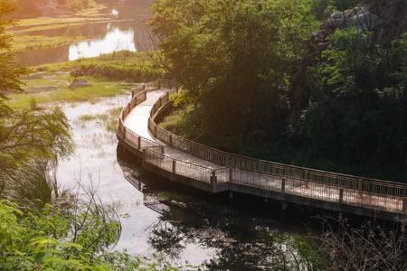 Wooden walkway bridge for enjoy nature.