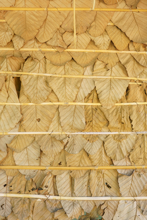Natural cottage wall made from dried leaf.