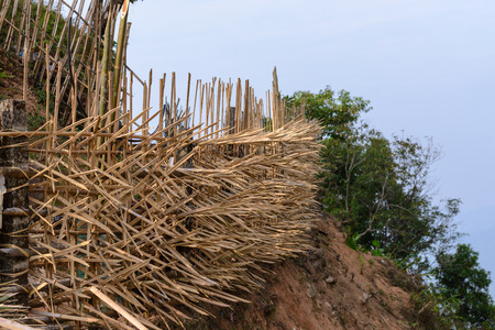 Bamboo fence for protecting restricted area. Stock fotó