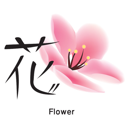 hieroglyph: Japanese hieroglyph with flower, vector Illustration