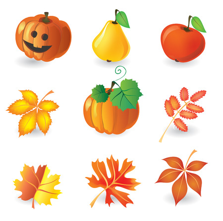 Set of autumn icons for design Vector