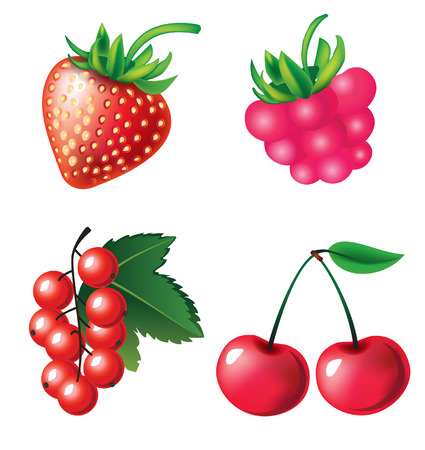 raspberry pink: Vector set of berries objects