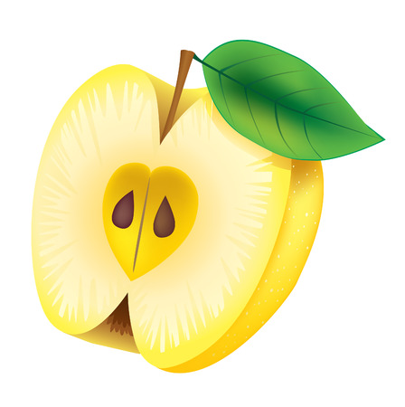 yellow apple: Half of yellow apple with green leaf