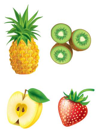 Set of four fruit - pineapple, kiwi, apple, strawberry Vector