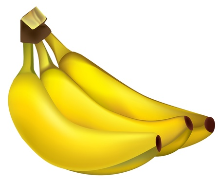 Bunch of ripe yellow bananas. Vector  Stock Vector - 9216661