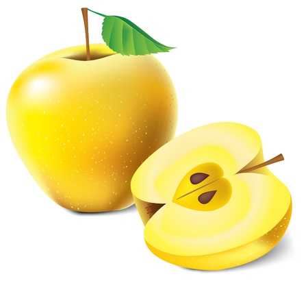 Yellow apples vector illustration isolated over white background Stock Vector - 9216665