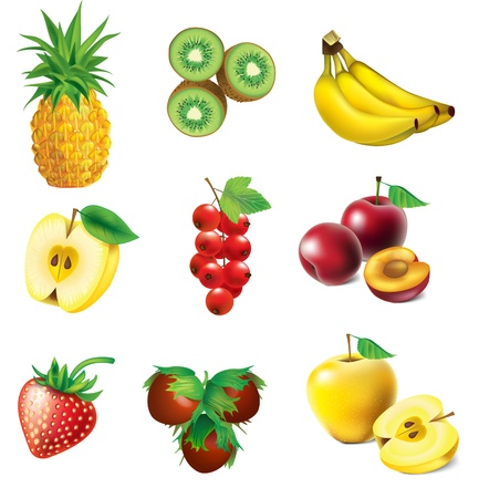 Set of vector fruit - pineapple, kiwi, apple, strawberry, red currant, banana, plum and hazelnut 矢量图像
