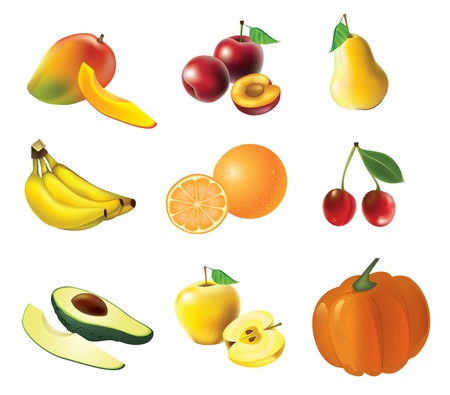 mango leaf: Fruits and vegetables, set of isolated, detailed vector illustrations and icons