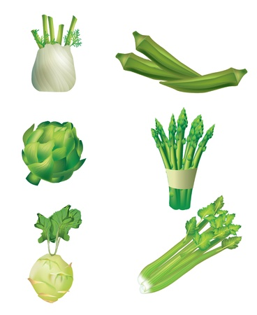esparragos: Conjunto de verduras - hinojo, okra, alcachofas, espárragos, colinabos y apio
