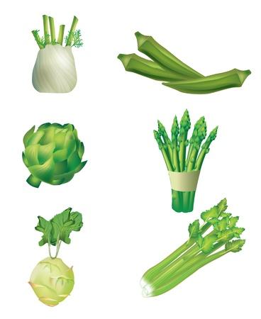 finocchio: Set di verdure - finocchio, gombo, carciofi, asparagi, cavolo rapa e sedano Vettoriali