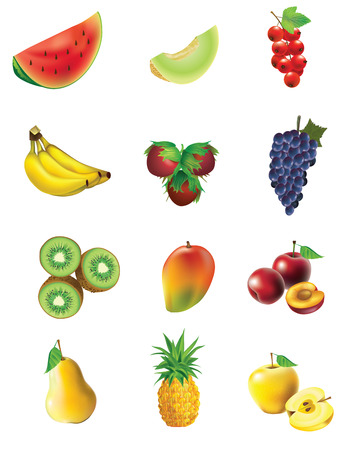 Fruits and vegetables, set of isolated, detailed vector illustrations and icons