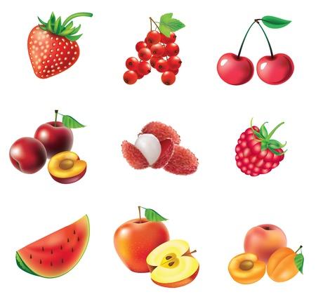 Rode vruchten en bessen, set van geïsoleerde, gedetailleerde illustraties en pictogrammen