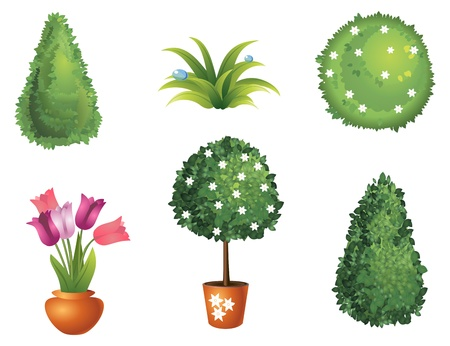 plant pot: Set of garden plants with flowers and leaves