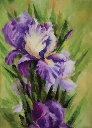 Picture oil paints on a canvas: Iris flowers. Vector Illustration