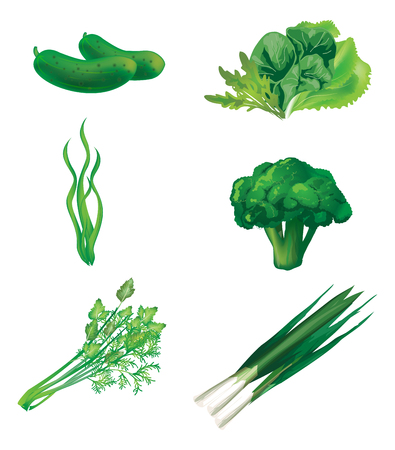 fruit and veg: Set of green vegetables. Vector