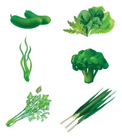 fruit and veg: Set of green vegetables. Vector