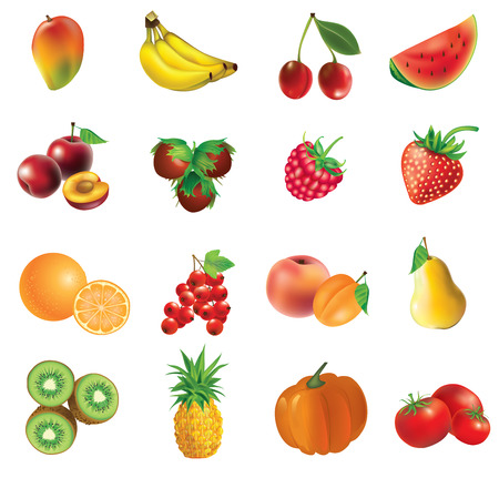pumkin: Fruits and vegetables, set of isolated, detailed illustrations and icons - mango, banana, cherry, watermelon, plum, haselnuts,  strawberry, raspberry, orange, currant, apricot,  peach, pear, kiwi, pineapple, pumkin, tomato