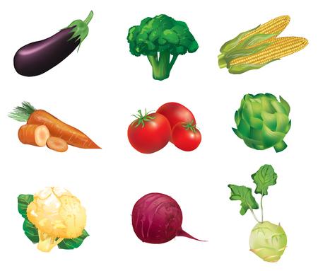 Légumes, ensemble de isolés, des illustrations détaillées et icônes - aubergine, le brocoli, le maïs, la carotte, la tomate, l'artichaut, le chou-fleur, betteraves, céleri