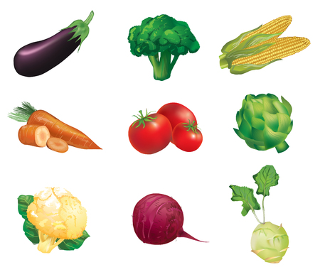 beets: Vegetables, set of isolated, detailed illustrations and icons -  eggplant, broccoli, corn, carrot, tomato, artichoke, cauliflower, beets, celery
