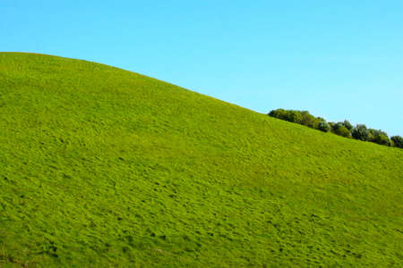 A clean, green grass hill on a blue sky background in New Zealand