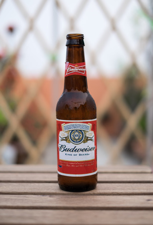 budweiser: BANGKOK, THAILAND - MARCH 19, 2016: A single bottle of Budweiser beer on wooden table on March 19, 2016 in Bangkok, Thailand.