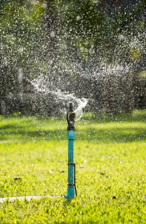 Splashing from a sprinkler on the garden