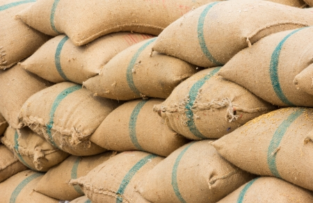 Many rice sacks in row perspective