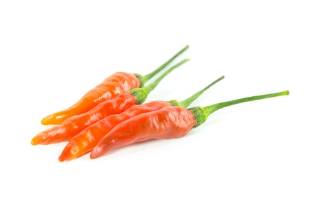 Red chili on white background  Stock Photo