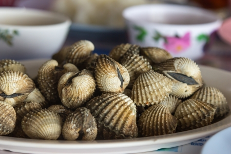 cockles: Fresh blanched cockles