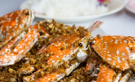 Fried crabs with garlic and rice  Stock Photo