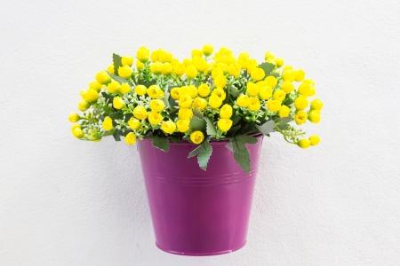 Purple Jardiniere and flower on wall