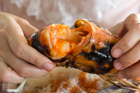 Tear the grilled shrimp by hands  Stock Photo