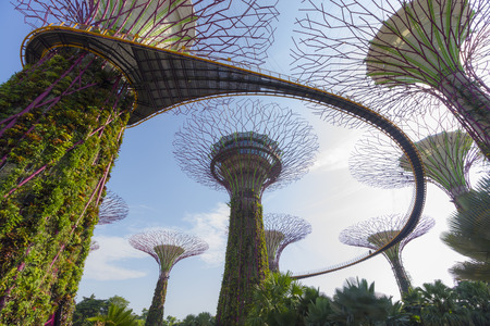 live work city: Singapore - October 23, 2014: Gardens by the Bay brings to life vision of creating a City in a Garden. The Gardens captures the essence of Singapore with the perfect environment in which to live and work