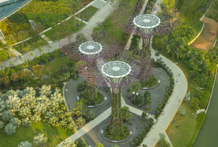live work city: High view Botanical of garden by the bay Singapore - October 23, 2014: Gardens by the Bay brings to life vision of creating a City in a Garden. The Gardens captures the essence of Singapore with the perfect environment in which to live and work Editorial