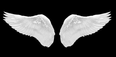 ali di angelo: angelo bianco ala isolato Archivio Fotografico