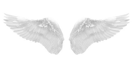 white angel wing isolated Stock Photo - 23764277