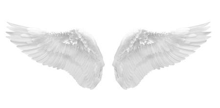 witte engel vleugel geïsoleerd