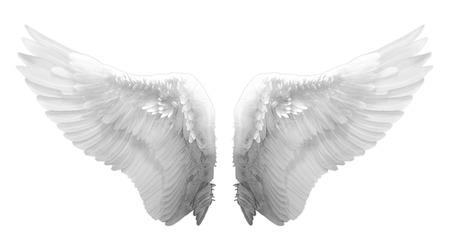 격리 된 흰색 천사 날개
