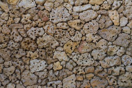 porous: porous pumice stones Wall